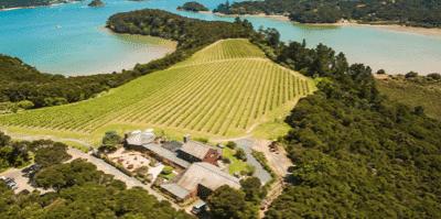 Wed 15 Nov 2017 – Omata Estate – NZ